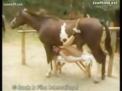Girl fuck horse for orgasm hardcore animal xxx - HD Porn