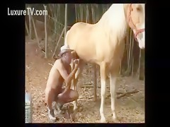 Horse sex free fucking couple bitch compilation xxx animals