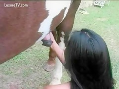Horse dick gets sucked creampie by horny slut bitch