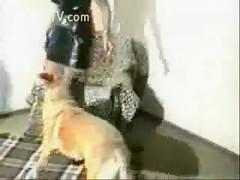 Amateur dog fucks girl hard on cam at home