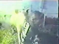 Dog sex collection amateur xxx videos