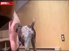 Dog fucking young girl show cam HD