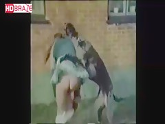 Animal porno compilation in 1980 hardcore videos xxx zoo