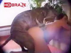 Dog blowjob compilation xxx animal free HD
