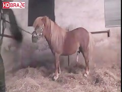 Bitch mature girl fucks horse xxx for hardcore animal videos