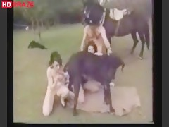 Horse sex group outside and dog licking teen pussy