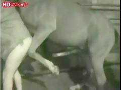 He needs a huge horse porn taking inside his ass