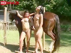 Horse sex outdoor in threesome with human