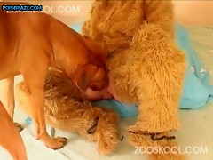 Good dog fucks blonde girl in cosplay