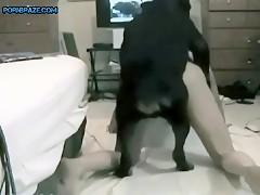 Amazing animal porn hardcore solo on cam