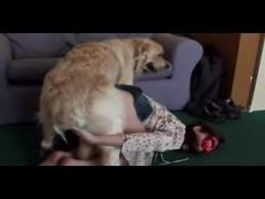 Young girl slut fun with dog - Animals porno