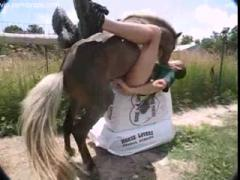 Public Fucked By Horse