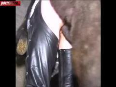 try fucking horse