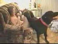 Dog loves digging his owner's pussy