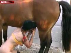 Lucky Horse Crazy Fucking With Girl