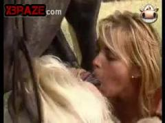Blonde girl blowjob animals penis