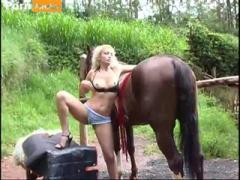 big horse deep inisde sweet pussy
