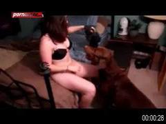 white girl show cam sex animal