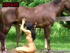Bog Horse Public Fuucking Hardcore Woman
