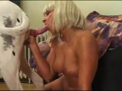 Girl sucking big dog's dick - Animals porn