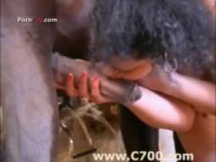 Black Girl Lustful Love Licking Big Cock Horse