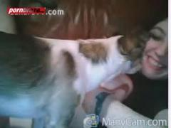 litte dog lick pussy bbe girl
