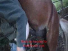 Horny amateur girl fuck horse from back
