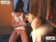 Dog rammed hard big ass - Anal sex dog