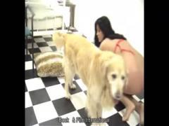 Dog fucks girls hardly show cam